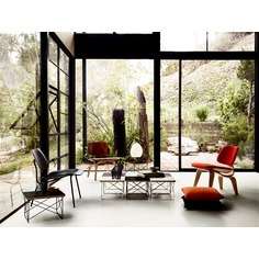 Eames Molded Plywood Chairs thumbnail 2